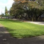 和田小学校の芝生