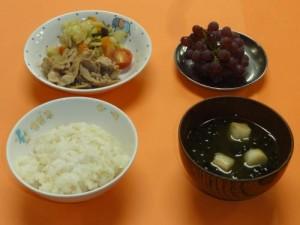 cook_menu_0521d3a902e049[1]